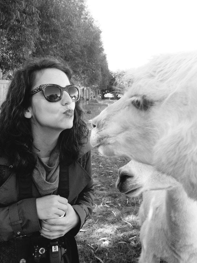 NZ-Jess-kiss-llamas-V