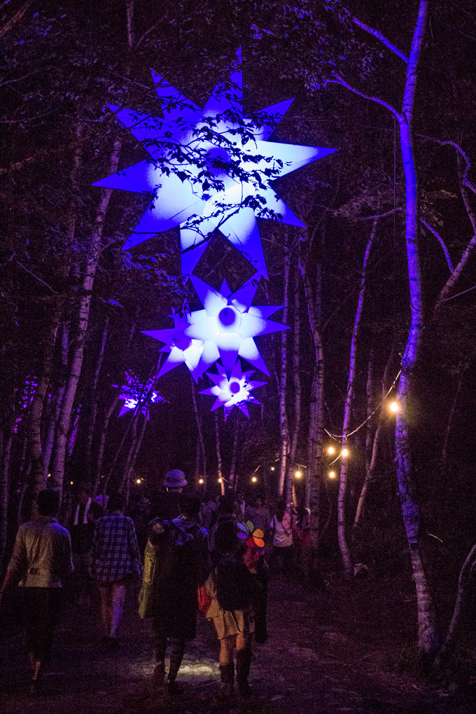 fuji rock festival forest lights