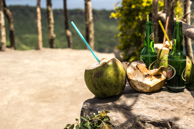 PI-Taal-coconut-drinks-H
