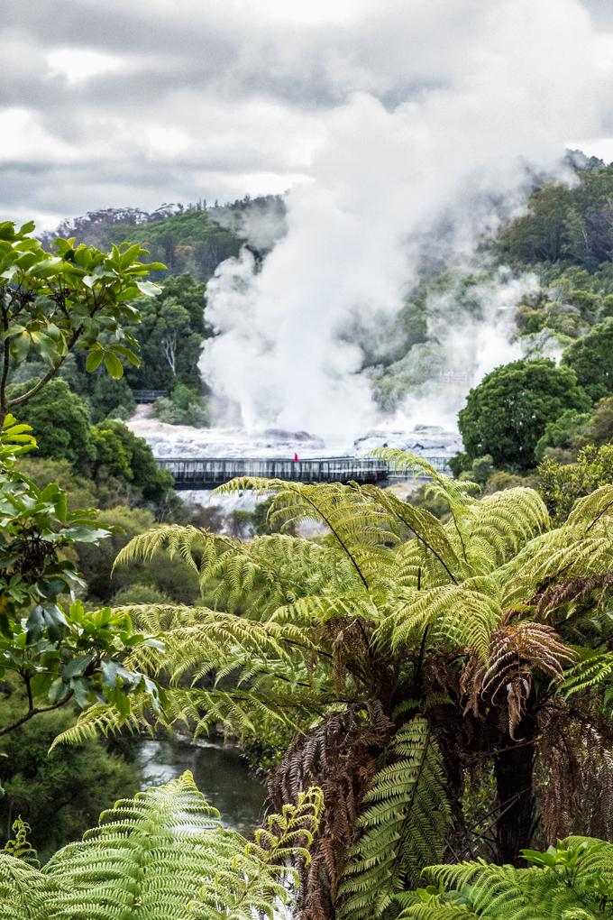 NZ-Rotorua-Bridge-V