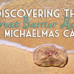 Discovering the Great Barrier Reef & Michaelmas Cay