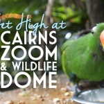 Get High at Cairns Zoom & Wildlife Dome