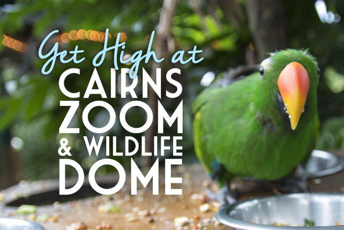 Cairns Zoom & Wildlife Dome, Australia