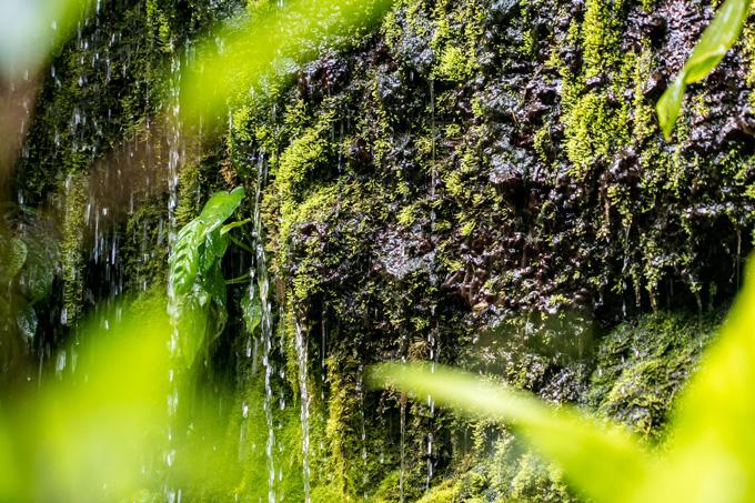 Ubud Maya waterfall, Bali