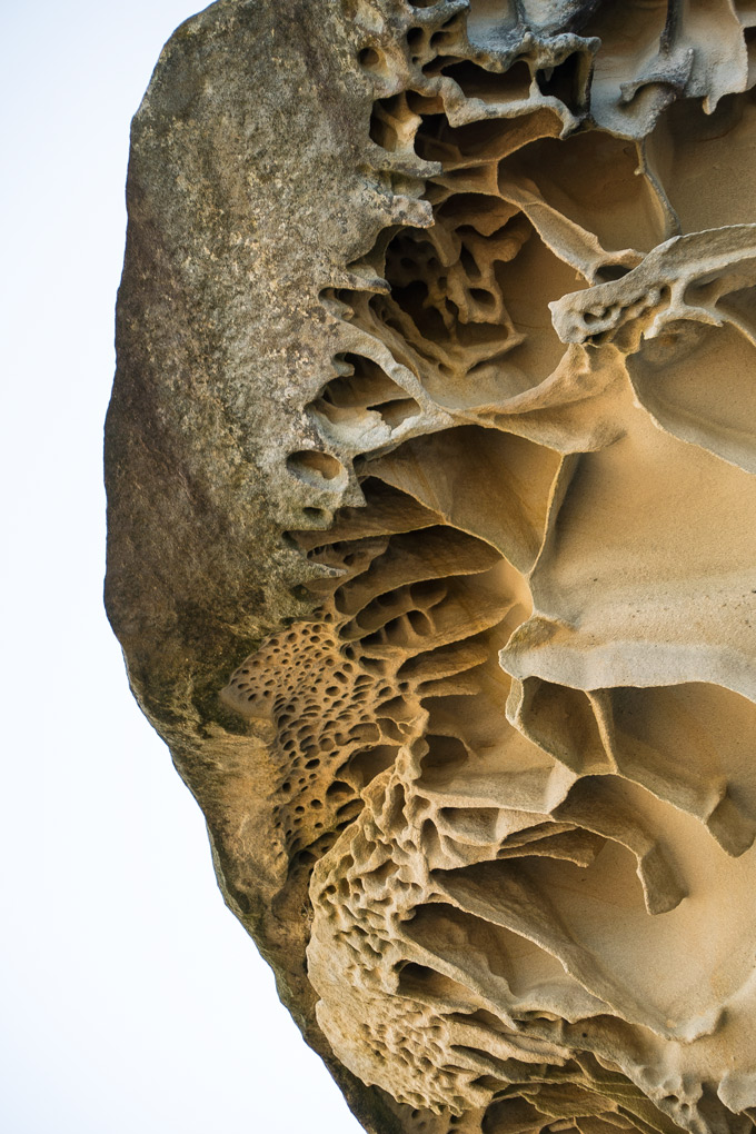 Rock formation at Tamarama Beach, Sydney, Australia