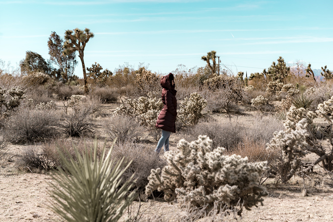 Jessica Peterson of Global Girl Travel at Joshua Tree National Forest Park in California wearing travel style puffer coat with fur-trimmed hood