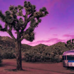 Getting Lost in Joshua Tree National Park