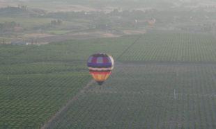 Hot air balloon, Temecula, California