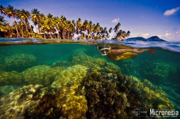 chuuk snorkeler