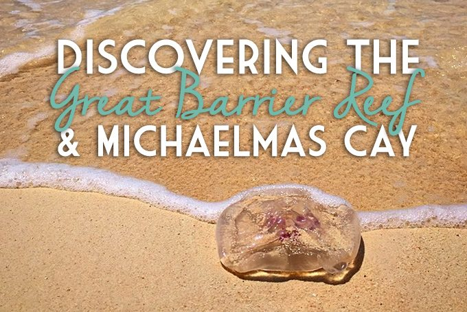 great barrier reef, cairns australia