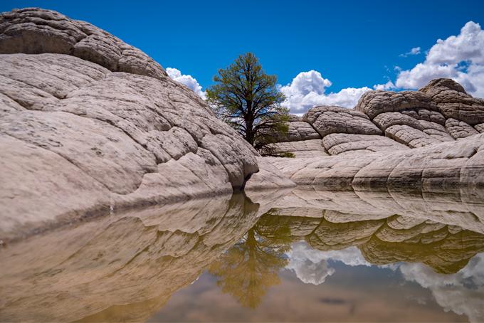 White Pocket, Arizona