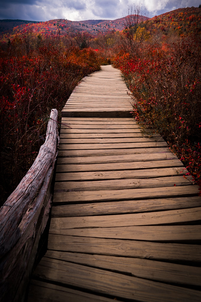 asheville-hike-path-v