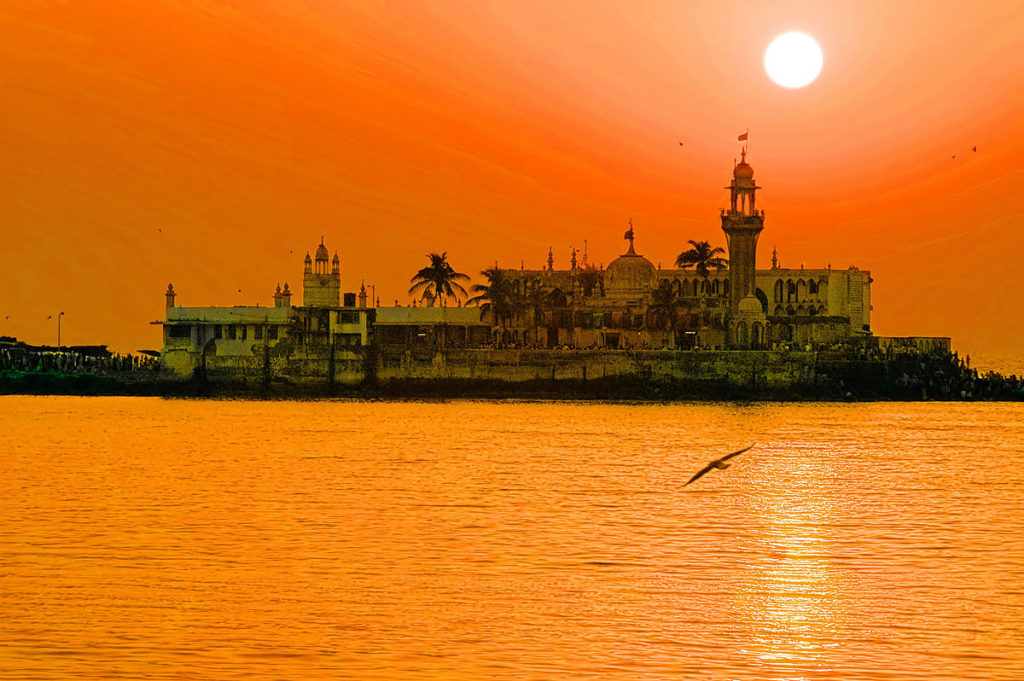 By Humayunn Peerzaada AKA HumFur from Mumbai, India [CC BY-SA 2.0 (http://creativecommons.org/licenses/by-sa/2.0)], via Wikimedia Commons
