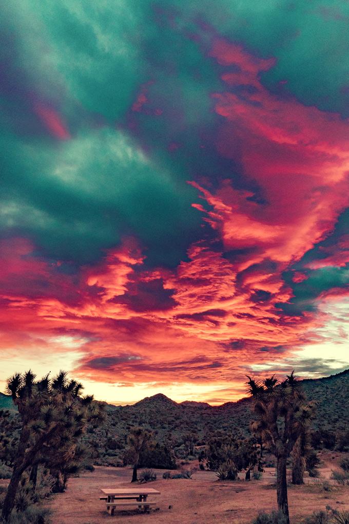Sunrise over Joshua Tree National Park, California