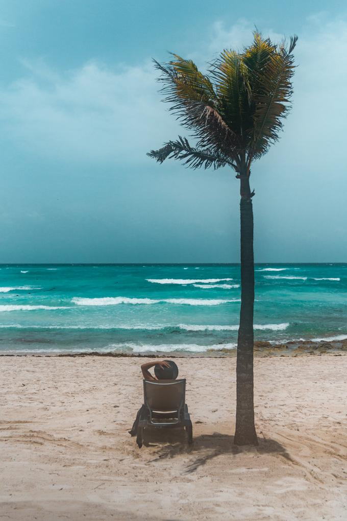 Riviera Maya, Mexico beach palm tree